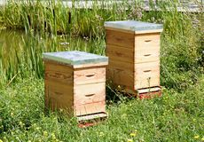 Two hives in a meadow Royalty Free Stock Photography