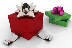 Two holiday box Royalty Free Stock Images