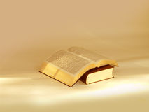 Two Holy Bibles. Opened Holy Bibles, on light warmth background royalty free stock photography