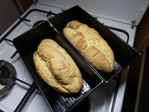 Two homemade bread Royalty Free Stock Photos