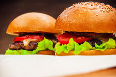 Two homemade burgers Royalty Free Stock Photos