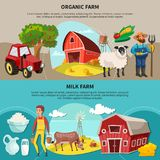 Farm Cartoon Composition Set. Two horizontal farm cartoon composition set with organic and milk farm headlines vector illustration Royalty Free Stock Photos