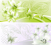 Two horizontal floral banner Royalty Free Stock Image