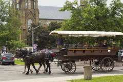 Two horse carriage with tourists in Charlottetown in Canada Stock Images
