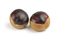 Two horse chestnuts isolated on white Stock Images