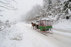 Two-horse Sleigh (Zanka). Sleigh drawn by a pair of horses, two-horse sleigh Royalty Free Stock Images