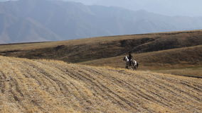 Two horseman in the mountains. The Horsecar on background of the mountains stock video footage