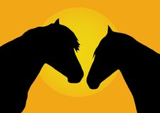 Two horses. Silhouette of two horses against the sunset Stock Photo