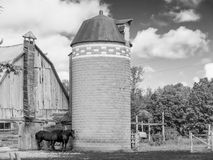 Two Horses barn and silo Stock Photo