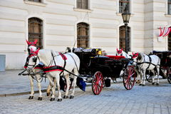 Two horses carriage in Hofburg Royalty Free Stock Photo