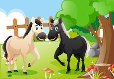 Two horses in the farm. Illustration Stock Image