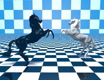 Two horses  fighting, checkered blue background. Royalty Free Stock Photos