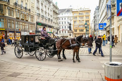 Two horses harnessed to the carriage Royalty Free Stock Photos