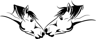 Two horses kissing Royalty Free Stock Images