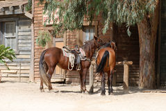 Two Horses in an old American town Royalty Free Stock Photo