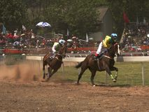 Two Horses at Race. Two horses are racing at a horse race at a celebration Stock Photography