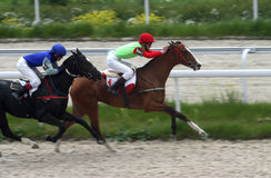 Two horses racing. Side view of two horses and jockeys racing on sandy track, Hippodrome, Pyatigorsk, Russian Frederation Stock Photo