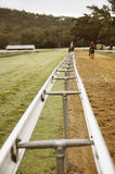 Two horses walking on the race track Royalty Free Stock Photo