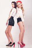 Two hot girls full lenght on grey background Royalty Free Stock Photography
