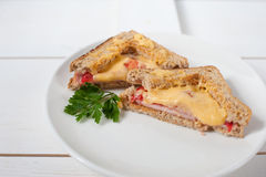 Two hot sandwich with cheese, tomatoes, fresh herbs and vecinos on a white dish Royalty Free Stock Photos