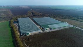 Two huge glasshouses in the field, aerial shot. Massive greenhouses from high angle, in the morning, aerial shot stock footage