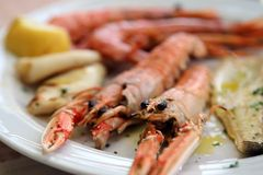 Two huge prawns grilled in the dish of the restaurant Royalty Free Stock Images
