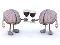 Two human brain with glass of red wine Stock Image