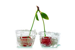 Two ice cubes with cherry Royalty Free Stock Image