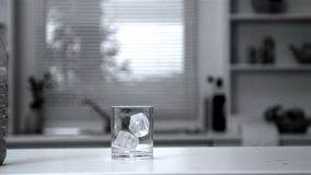Two ice cubes falling in an empty glass Royalty Free Stock Photography