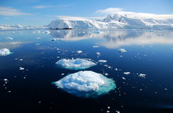 Two ice floes. Ice floes in antarctic ocean Royalty Free Stock Images