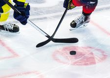 Ice hockey player on the ice royalty free stock photography