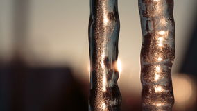 Two icicles in the evening against the sun. Video full hd stock footage