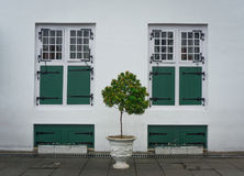 Two identical green windows with a tree in the middle photo taken in Jakarta Indonesia Stock Photo