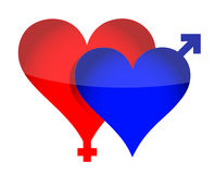 Two illustrated hearts with gender sign Royalty Free Stock Images