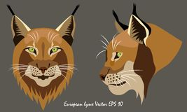 Two illustrated vector portraits of lynx, full face and profile, close-up. vector illustration