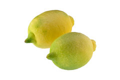 Two immature lemons Stock Images