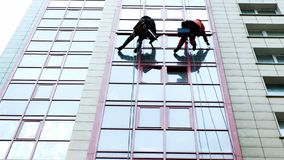 Two industrial climbers are washing, cleaning facade of a modern office building royalty free stock photo