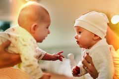 Two infant babies are very interested in each other. Learning stock photo