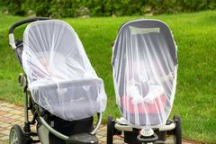 Two infant kids in strollers covered with protective net during walk. Baby carriage with anti-mosquito white cover. Midge protecti royalty free stock images