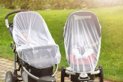 Two infant kids in strollers covered with protective net during walk. Baby carriage with anti-mosquito white cover stock photos