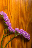 Purple flowers on a decorative wood background Stock Images