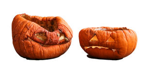 Two isolated aged pumkins