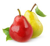 Two isolated pears Royalty Free Stock Photography