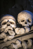 Two isolated skulls in Fontanelle cemetery. royalty free stock photography