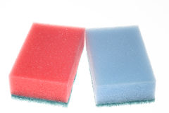Two isolated sponges Stock Image
