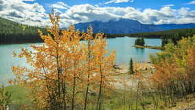Two Jake Lake. Two Jack Lake - Picture of Banff National Park stock video
