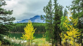 Two Jake Lake. Two Jack Lake - Picture of Banff National Park stock video footage
