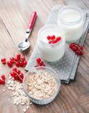 Two jars of fresh yogurt Royalty Free Stock Photography