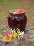 Two jars of jam collected from wild strawberries royalty free stock image