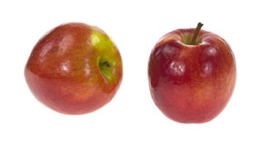 Two Jazz apples. Two Jazz variety apples on a white background Royalty Free Stock Photos